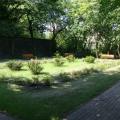 środowiskowy dom pomocy - ogród